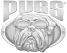 PUGS Product Design and Development